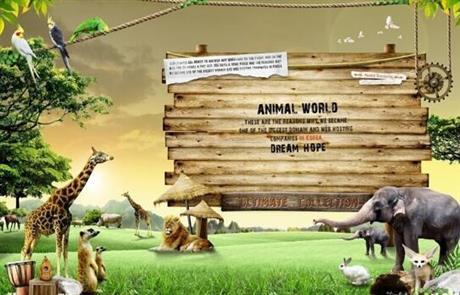 贵州旅行社,广州长隆欢乐世界、野生动物世界往返高铁二日游